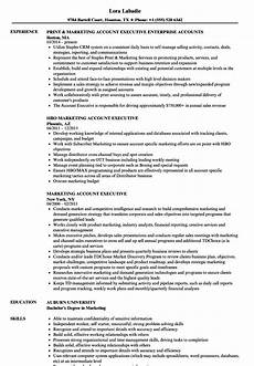 Resume For Account Account Executive Resume Sample Ipasphoto