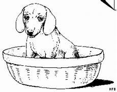 hundebaby in koerbchen ausmalbild malvorlage tiere