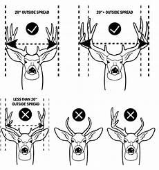 Deer Antler Age Chart Tpwd News Release Nov 11 2018 Hunters Reminded Of New
