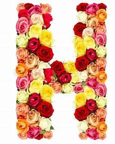 flower wallpaper letter h roses flower alphabet isolated on white stock photo
