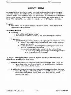 Essay Organization Types Essay Structure Essay Organization And Types Of Essays
