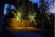 Outdoor Lighting For Trees Low Voltage Striking Low Voltage Outdoor Lighting Examples And Ge Low