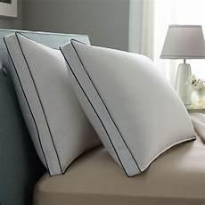 downaround medium 2 pk pillow pacific coast bedding