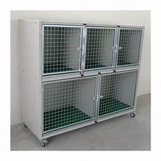 gabbie cani gabbie degenza box esposizione per cani e gatti ferranti