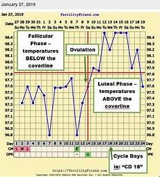 How To Track Basal Body Temperature Bbt
