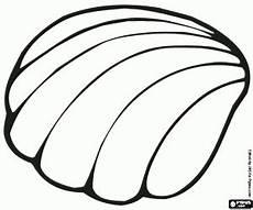 Muschel Ausmalbilder Malvorlagen Malvorlagen Eine Marine Muschel Ausmalbilder Malvorlagen