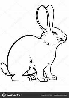 kaninchen hase lineare zeichnung eines hasen vorlage zum