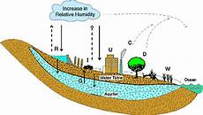 What Effect Does Human Activity Have On Many Ecosystems What Are Some Examples Of Human Activities That Affect