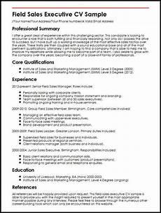 Executive Cv Example Sales Executive Resume Mt Home Arts