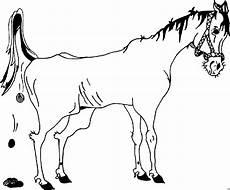pferd mit pferdeaepfel ausmalbild malvorlage pferde
