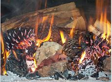 Bread Recipes For Your Wood Fired Oven