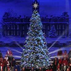 Professional Christmas Tree Lights Giant Everest Fir Christmas Tree With Led Lights 14