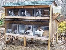 costruire gabbia conigli come costruire una gabbia per conigli fai da te