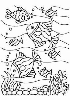 Ausmalbilder Fische Meer Fische Ausmalbilder Meer Fischlexikon