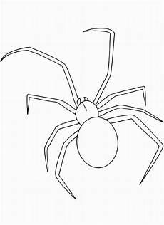 Malvorlagen Spinnen 20 Besten Ausmalbilder Spinne Beste Wohnkultur