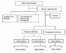 Which Organization Audits Charts Regularly Organizational Structure Internal Audit Office Of The