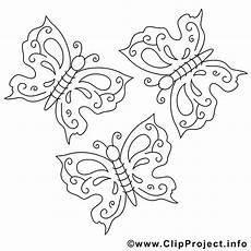 Malvorlagen Zum Ausdrucken Schmetterling Schmetterling Malvorlage