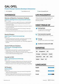Example Of A Resume Real Business Development Resume Example Enhancv