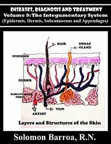Integumentary System Diseases Amazon Com Diseases Diagnosis And Treatment The