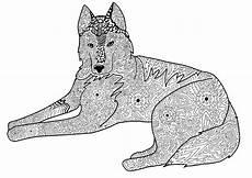Ausmalbilder Hunde Erwachsene Para Dog Png 3600 215 2550