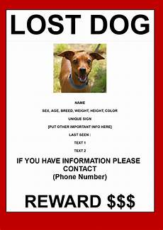 Lost Dog Poster Maker Find Lost Dog Poster In A3 Size Templates At