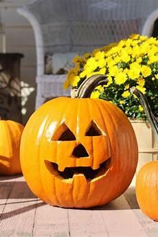 Skinny Pumpkin Designs How To Carve A Pumpkin Halloween Pumpkin Stencils Easy
