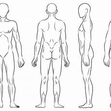 Body Diagram For Professional Chart Front Back