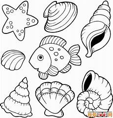Printable Pictures Of Seashells Beach Shells Coloring Pages Coloring Home