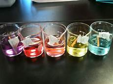 Potato Osmosis Lab Osmosis And Diffusion Lab Ap Biology Lab Notebookby