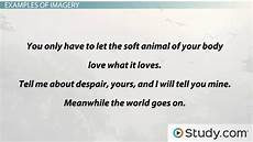 Imagery Poetry Imagery In Poetry Definition Examples Amp Types Video
