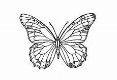 Malvorlage Schmetterling Pdf Hier Finden Sie Sch 246 Ne Schmetterlinge Ausmalbilder Als Pdf