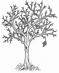autumn tree without leaves in fall leaf coloring page