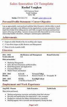Cv Format For Marketing Executive Sales Executive Cv Template 1