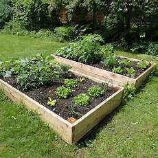 raised garden beds tanalised timber 1 2m 4ft x 1 2m 4ft