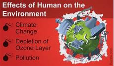 What Effect Does Human Activity Have On Many Ecosystems Earth Shattering Ways How Humans Affect The Environment