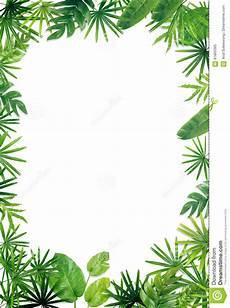 Green Border Design Green Leaf Border Background Stock Image Image Of Bamboo