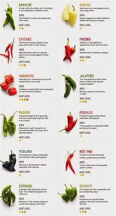 Chili Heat Chart I Love Eat Spicy Food But I Never Know The Difference