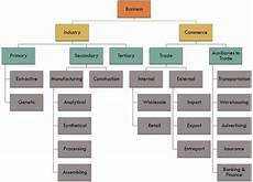 Business Activities Chart Difference Between Industry And Commerce With Comparison