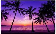 Malvorlagen Meer Und Strand Warstein Palmen Strand D 228 Mmerung Wasser Meer Wandtattoo
