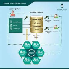 Voyage Healthcare Smart Chart Healthureum Hhem Healthcare Chart To Manage Your Data