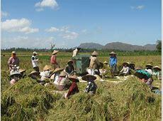 Masih Relevankah Menyebut Indonesia Sebagai Negara Agraris