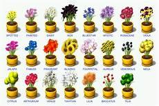Ubbthreads Php 762 215 514 Plants Planter Pots Planters