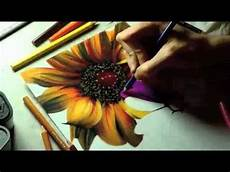 Drawings Of A Flower Drawing Realistic Flowers With Colored Pencil Youtube