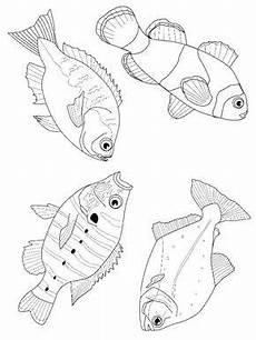 fisch malvorlagen fische zeichnen malvorlagen tiere und