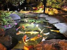 Water Feature Lights Underwater Are Underwater Pond Lights Harmful To Fish Turpin