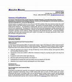 Ceo Resume Sample Doc 24 Award Winning Ceo Resume Templates