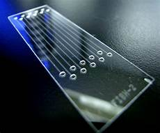 Lab On Chips Lab On A Chip Lab On A Chip Japaneseclass Jp