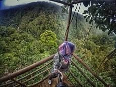 selfie di rumah portal batang wisata batang rumah pohon desa tombo