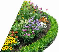 flower bed free clip with a transparent