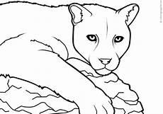 ausmalbilder tiere tiffanylovesbooks